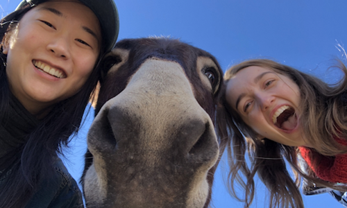 Picture of Erica and Kaitlin with a horse<